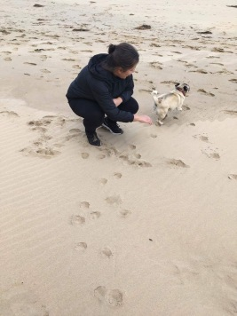 Australia, Anglesea, Ducanovic, Selma, finding a pug on the beach