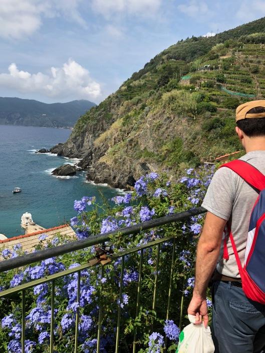 Beautiful hillside leaving Vernazza